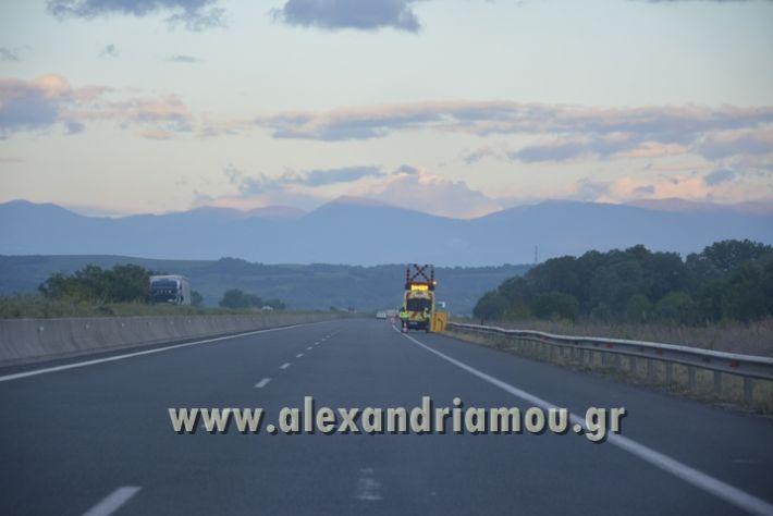 alexandriamou_troxaio_platanos010