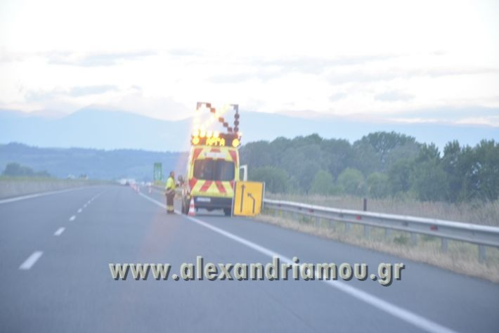 alexandriamou_troxaio_platanos011