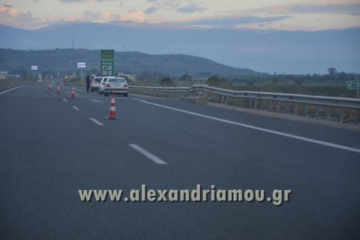 alexandriamou_troxaio_platanos013