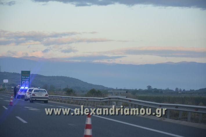 alexandriamou_troxaio_platanos014