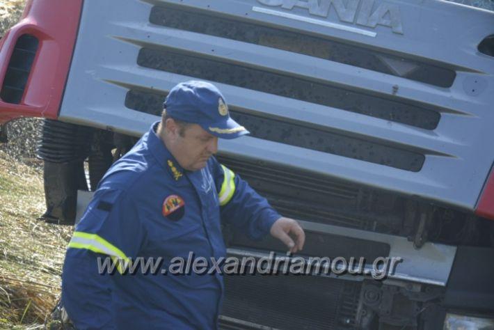 alexandriamou.gr_troxeo06.07.18041