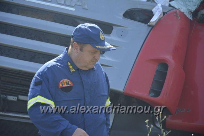 alexandriamou.gr_troxeo06.07.18042