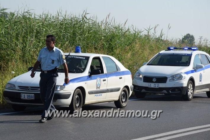 alexandriamou_atroxeo_zaxari17009