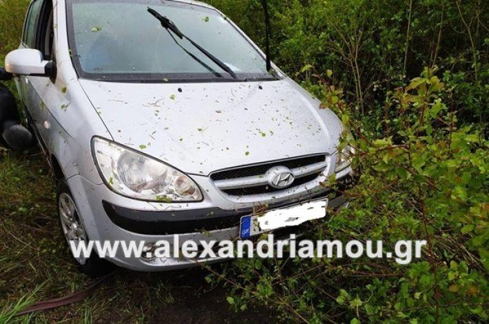 www.alexandriamou.gr_troxeo34590835130_224199642275293_8175805848090574848_n