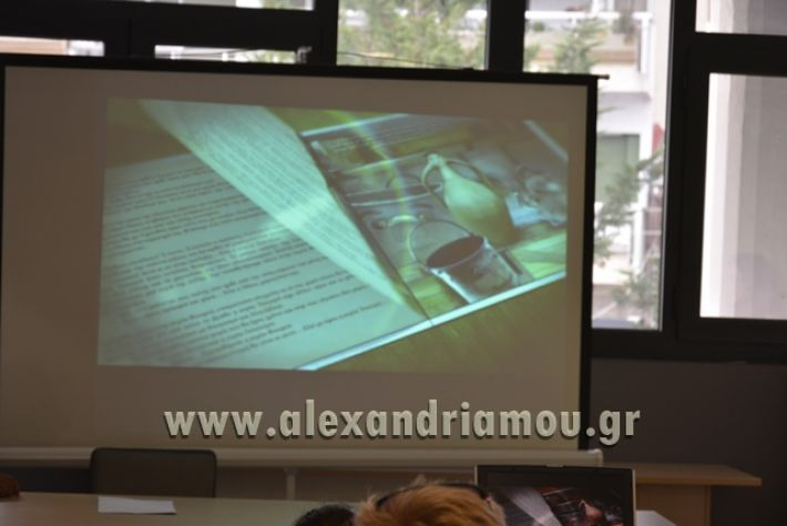 alexandriamou_kyria_tsagero1018