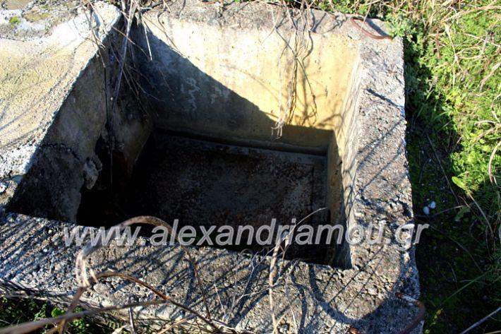 alexandriamou.gr_udragogeio2019IMG_0013
