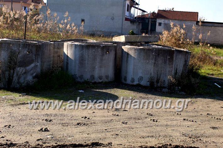 alexandriamou.gr_udragogeio2019IMG_9972