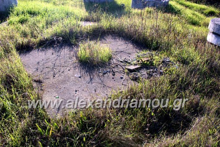 alexandriamou.gr_udragogeio2019IMG_9989