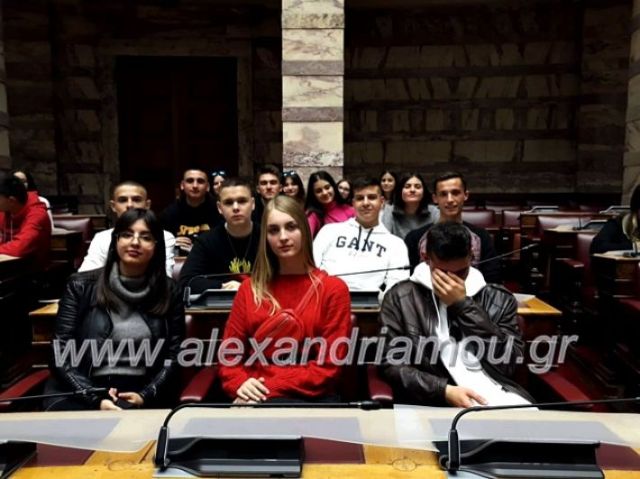alexandriamou.gr_vesiropoulos20192olukeio77401442_2427977810774729_7440782651339833344_n