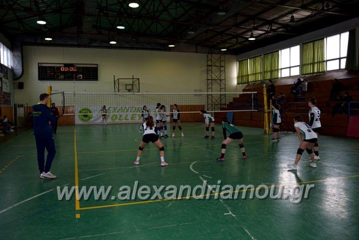 alexandriamou.gr_volei1920DSC_0435
