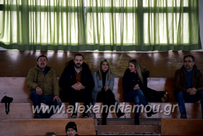 alexandriamou.gr_volei1920DSC_0460