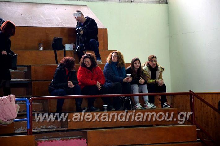 alexandriamou.gr_volei1920DSC_0461