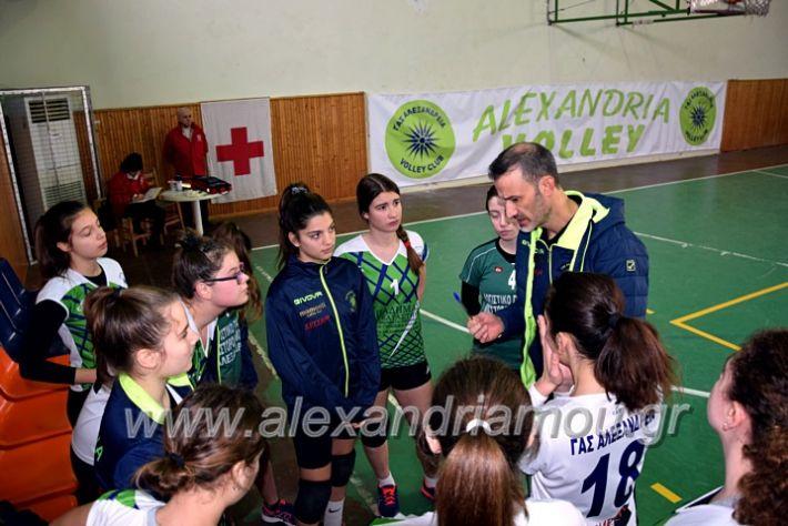 alexandriamou.gr_volei1920DSC_0464