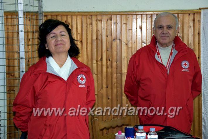 alexandriamou.gr_volei1920DSC_0469