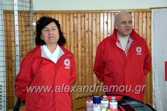 alexandriamou.gr_volei1920DSC_0471
