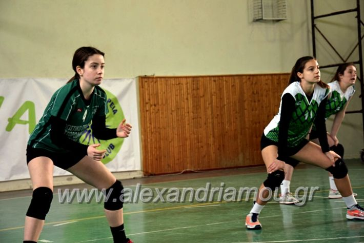 alexandriamou.gr_volei1920DSC_0492