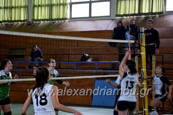 alexandriamou.gr_volei1920DSC_0521
