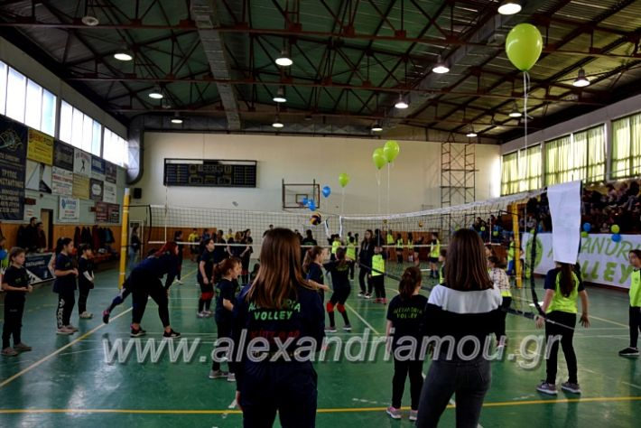 alexandriamou.gr_voleitournoua2020DSC_0678