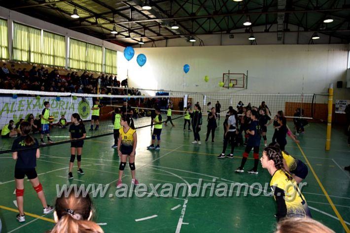 alexandriamou.gr_voleitournoua2020DSC_0691