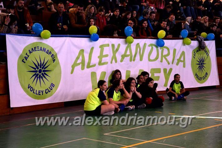 alexandriamou.gr_voleitournoua2020DSC_0695