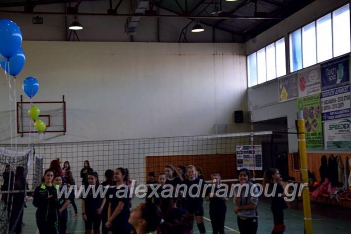 alexandriamou.gr_voleitournoua2020DSC_0701