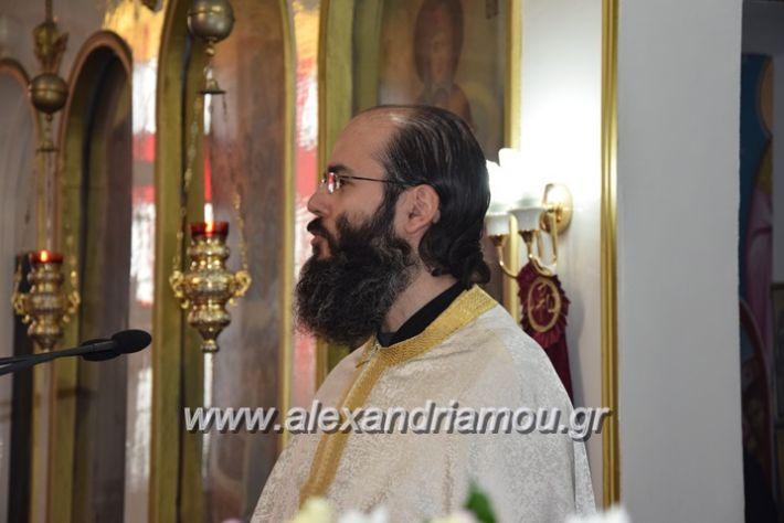 alexandriamou.gr_vrisaki_perifora12003