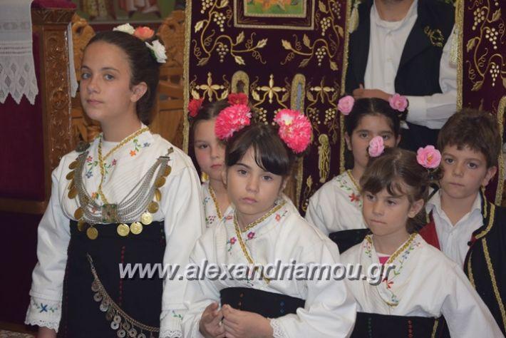 alexandriamou.gr_vrisaki_perifora12009