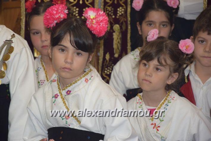 alexandriamou.gr_vrisaki_perifora12010