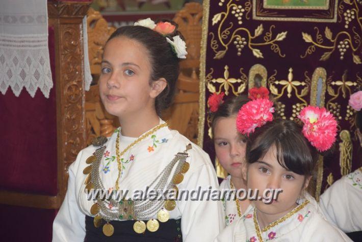 alexandriamou.gr_vrisaki_perifora12011