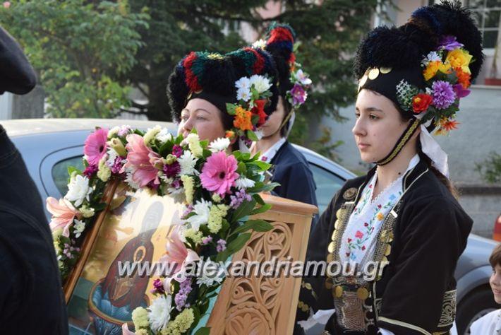 alexandriamou.gr_vrisaki_perifora12019