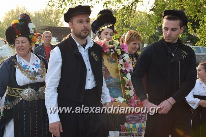 alexandriamou.gr_vrisaki_perifora12036