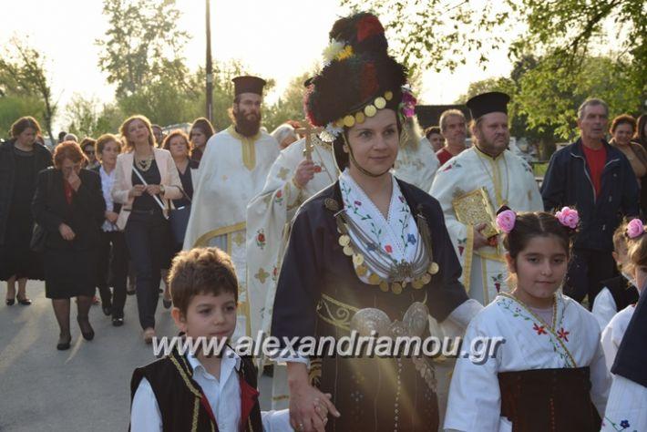 alexandriamou.gr_vrisaki_perifora12038