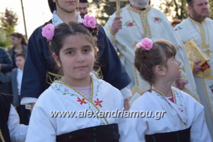 alexandriamou.gr_vrisaki_perifora12050
