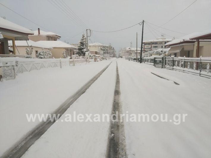 alexandiamou.gr_xionia05.01.19IMG_20190105_082602