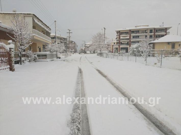 alexandiamou.gr_xionia05.01.19IMG_20190105_082646