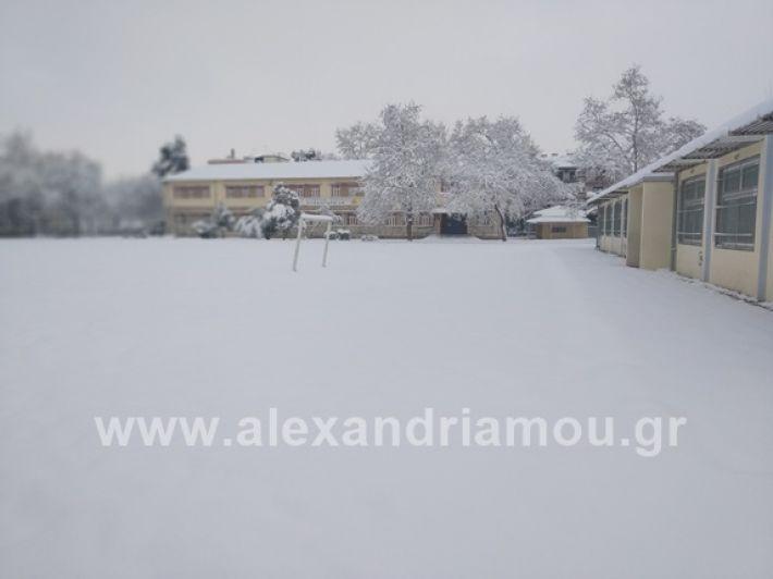 alexandiamou.gr_xionia05.01.19IMG_20190105_083207