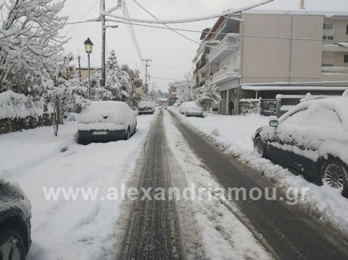 alexandiamou.gr_xionia05.01.19IMG_20190105_083941