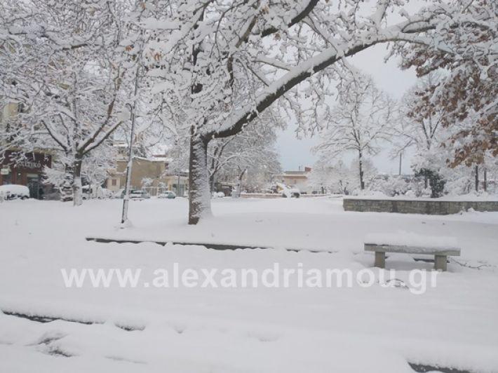 alexandiamou.gr_xionia05.01.19IMG_20190105_084102