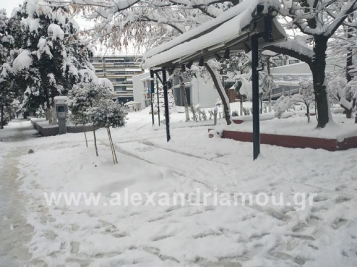 alexandiamou.gr_xionia05.01.19IMG_20190105_085709