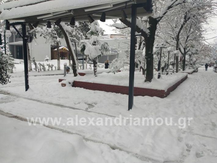 alexandiamou.gr_xionia05.01.19IMG_20190105_085711