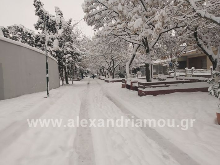 alexandiamou.gr_xionia05.01.19IMG_20190105_085814