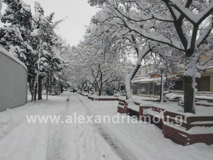 alexandiamou.gr_xionia05.01.19IMG_20190105_085818