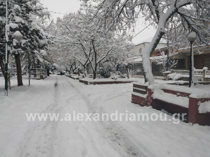 alexandiamou.gr_xionia05.01.19IMG_20190105_085821