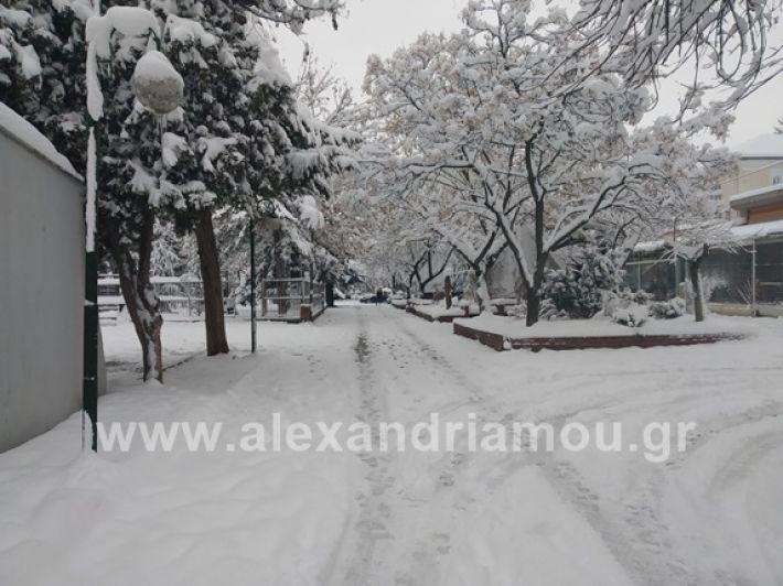 alexandiamou.gr_xionia05.01.19IMG_20190105_085823