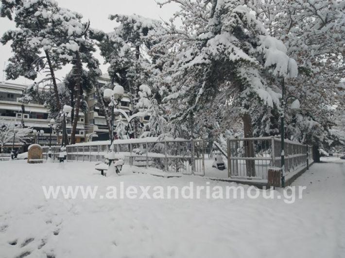 alexandiamou.gr_xionia05.01.19IMG_20190105_085835