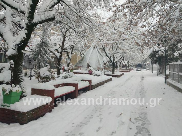 alexandiamou.gr_xionia05.01.19IMG_20190105_085856