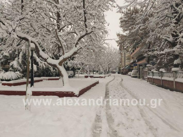 alexandiamou.gr_xionia05.01.19IMG_20190105_085943