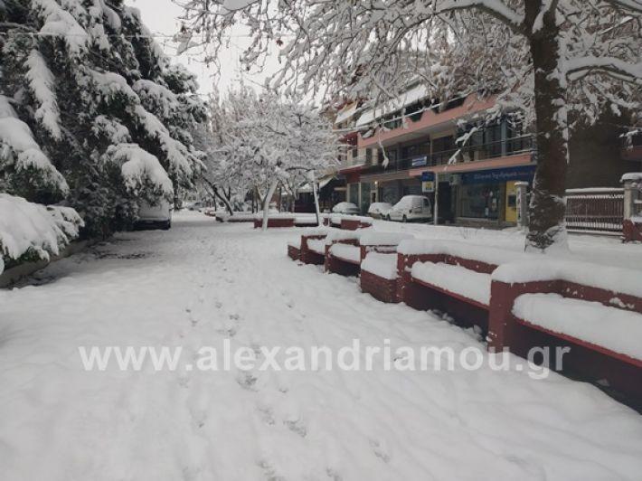 alexandiamou.gr_xionia05.01.19IMG_20190105_090024