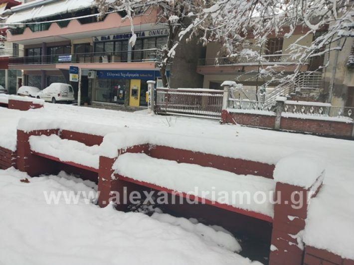 alexandiamou.gr_xionia05.01.19IMG_20190105_090029