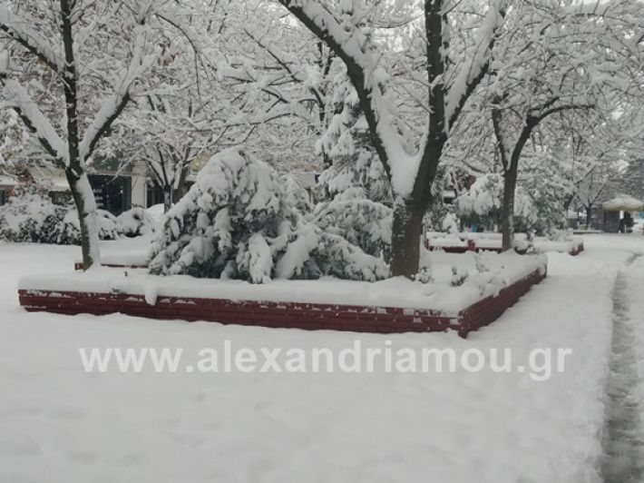 alexandiamou.gr_xionia05.01.19IMG_20190105_090106